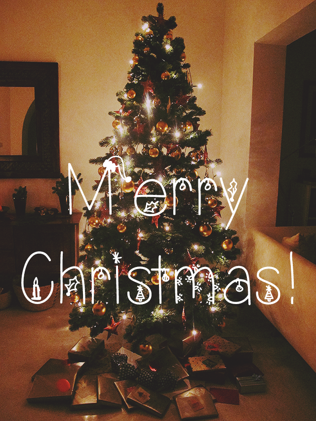 Frohe Weihnachten // Merry Christmas!: | the little nomad